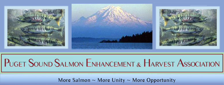 Puget Sound Salmon Enhancement and Harvest Association - More Salmon, More Opportunity, and Greater Unity!
